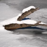 冬の自然湖(Ⅱ)