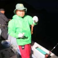 5/23(火):今シーズン初の半夜試し釣り釣行^^マイカ混じりで麦イカ爆釣・根魚絶好調!!