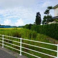 ちょっと良い貸家プロジェクト!『 岬町中原のリノべ風?な貸家 』。明日18日(水)予定通り上棟!です。