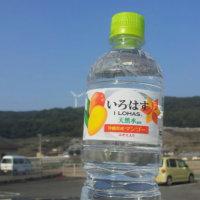 いろはす 沖縄県産マンゴー