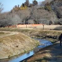 笠原水道・龍の道ウォーキング@水戸マニアの会外伝