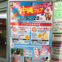 【イベント】イオン品川シーサイド沖縄フェア!