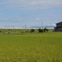 チョット前の撮影から、9月25日撮影 その4 東海道本線にて