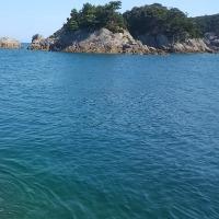 夏の〆釣りです!