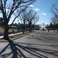 真冬の葛西臨海公園:JR葛西臨海公園駅と管理事務所周辺 PART2