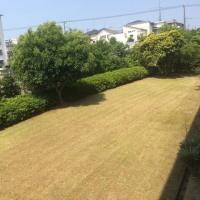草刈!すっきり!たまプラーザ団地の庭!