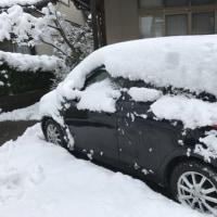 きょうのクメコ*雪〜