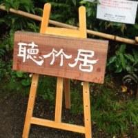 桜爛漫 京・大山崎探訪