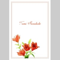 越前和紙のメッセージカード「百合の花」5枚セット 販売