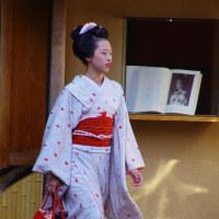 京都先斗町の舞妓さん