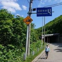 三国山〜平標山でお花見(後編)