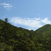 アポイ岳に行って来ました -2/3- (平成29年06月16日)。