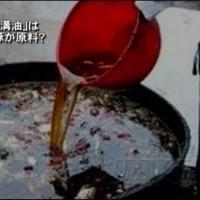 【KSM】日本を訪れた中国人が「このまま日本で暮らしたい」と思う理由