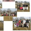 新春ミックスの写真です。
