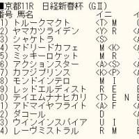 「日経新春杯」のカバラ暗示付き出馬表