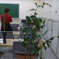 いけばな教室(椿を活ける)