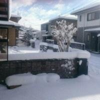 1月15日☆