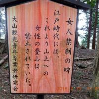 第1回青鳩トレイル大磯~大山大会コース地図(6/6)と写真