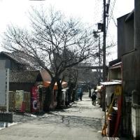 鹿嶋神社 2017.02.14