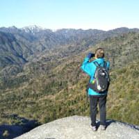 もののけ姫を探して 屋久島の旅5日目 白谷雲水峡