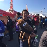 江ノ島でのマラソン大会