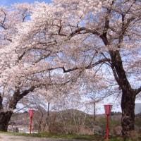 4/30 秋田に引っ越しをして1ヶ月