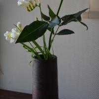玄関の花は一輪の薔薇と白のフリージアで春を