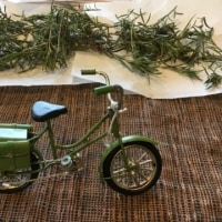 がんばりやちゃん、自転車を買う!