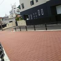 伍代夏子・肱川あらし  &  金田たつえ・夫婦譜