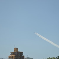 福岡市上空にブルーインパルスがやってきた!