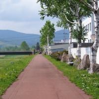 生田原の河川敷を歩く
