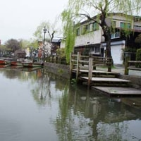 水郷・柳川(福岡県柳川市)~どんこ舟