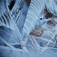 170115_茅ヶ崎里山公園-1 <薄氷-1>