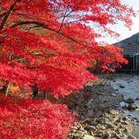 塩原温泉 紅葉