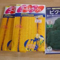 大雪  野菜の種  選定