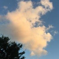 インターメッツォ: エリクソンの叡智 : 3つの視点