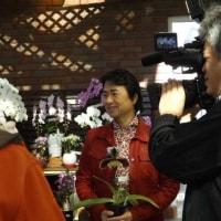3月22日(水)8:00~サンテレビ3ch『手づくり花づくり』に出演する予定です。