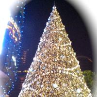 クリスマスイルミネーション@オーチャード 3