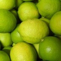 農薬不使用レモン 収穫しました