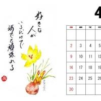 明日から4月・・・・・・・