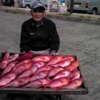 凪ならば おもろい釣りをいたしましょう。