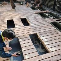 駒沢大学駅 儘(マンマ)様 植栽始まりました