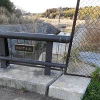 水戸の川べを散歩する-狭間川