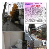 散策 「東京北西部-117」 目白界隈