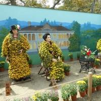 《福島県》 二本松の菊人形