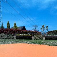 山田池公園バーベキュー広場から少し離れた静かなスペースで。