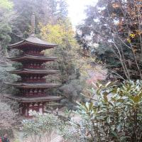 京都他短か旅:第6日