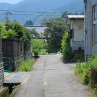 5月30日の散歩 霞んでる。