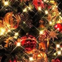 つぼみの会 クリスマス会
