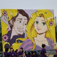高校の体育祭